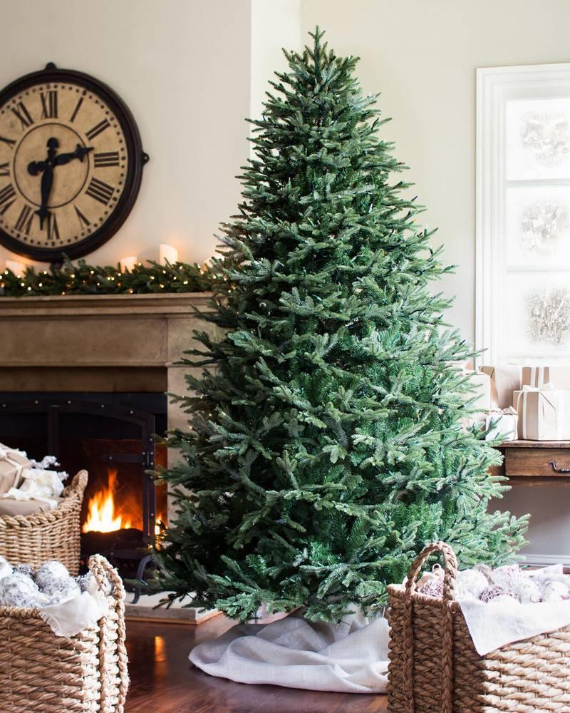 Frasier Fir Christmas Tree.Bh Fraser Fir Artificial Christmas Tree Balsam Hill
