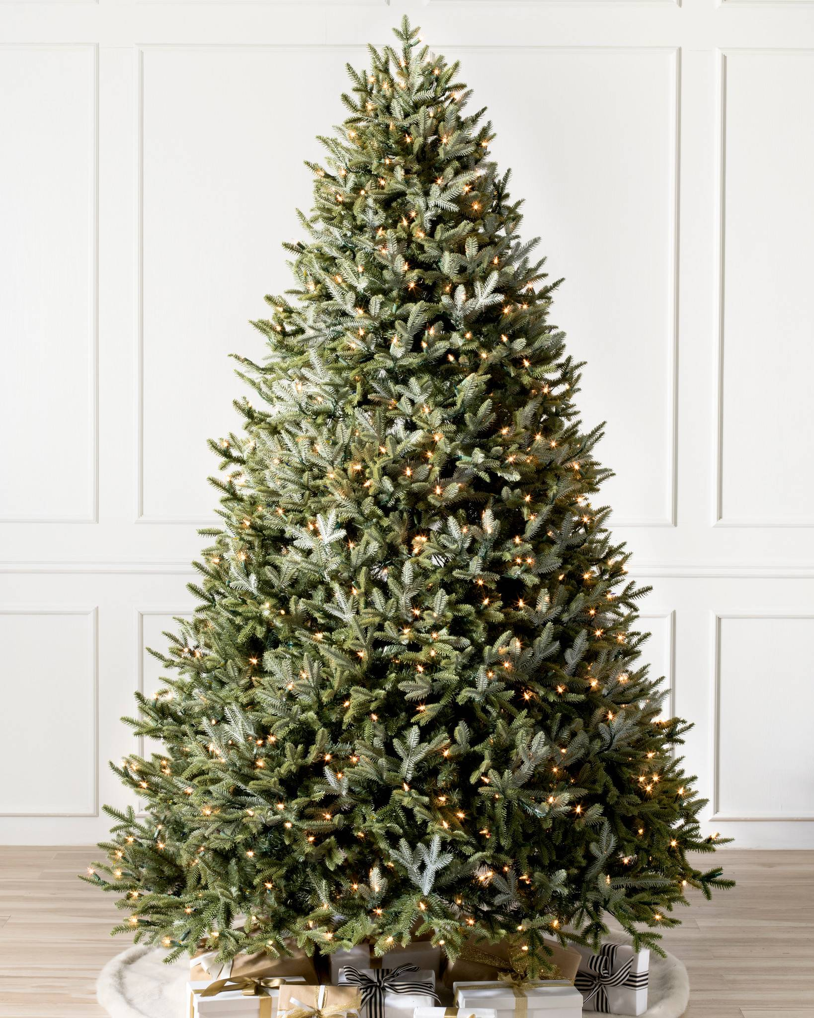 bh fraser fir tree 1 - Christmas Trees With Lights