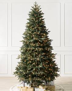 saratoga spruce tree 1 - Christmas Trees With Lights