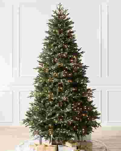 Saratoga Spruce Tree by Balsam Hill SSC 10