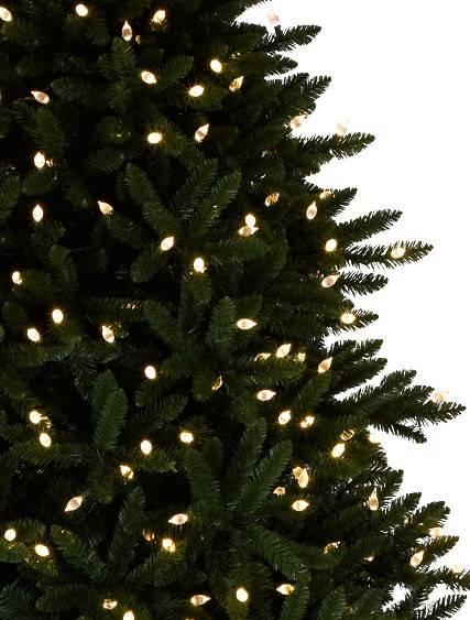 Rockefeller Pine Tree 2