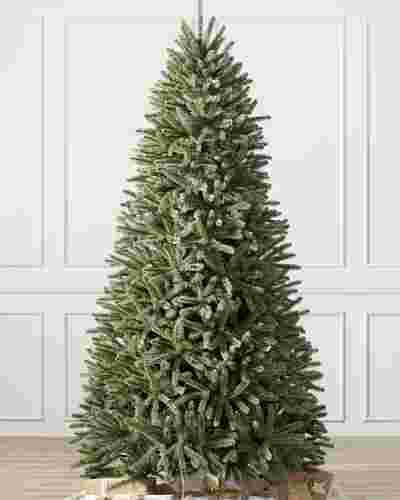 Royal Blue Spruce Child Main by Balsam Hill