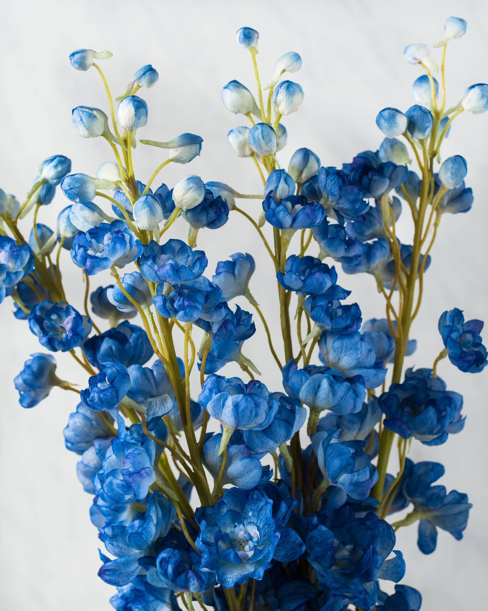 Delphinium Flower Stems Balsam Hill