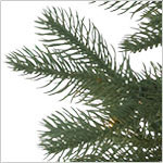 Cathedral Fir Tree by Balsam Hill Foliage
