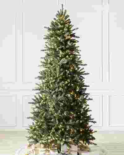 Berkshire Mountain Fir Tree by Balsam Hill SSC 10