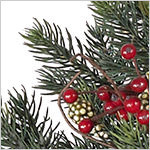 Norway Spruce Festive Wreath PDP Foliage