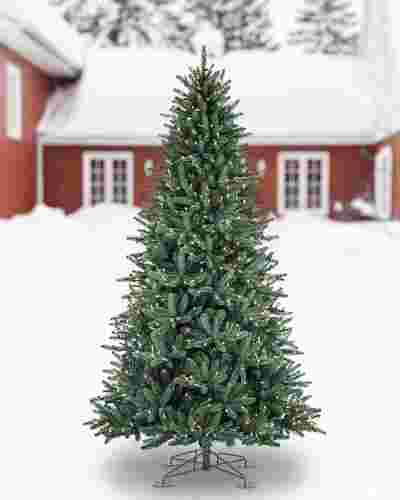 Oakville Outdoor Tree by Balsam Hill