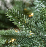 Biltmore Spruce by Balsam Hill Detail