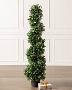 Outdoor Cypress Spiral Topiary by Balsam Hill