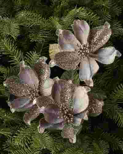Mini Magnolia Picks, Set of 12 by Balsam Hill