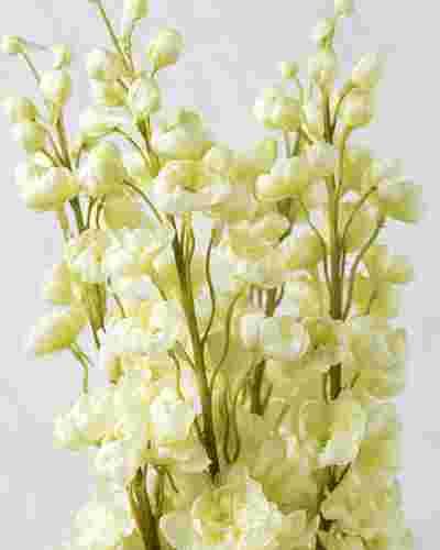 White Delphinium Stems, Bundle of 4