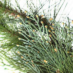 Aurora Pine Artificial Foliage by Balsam Hill Foliage