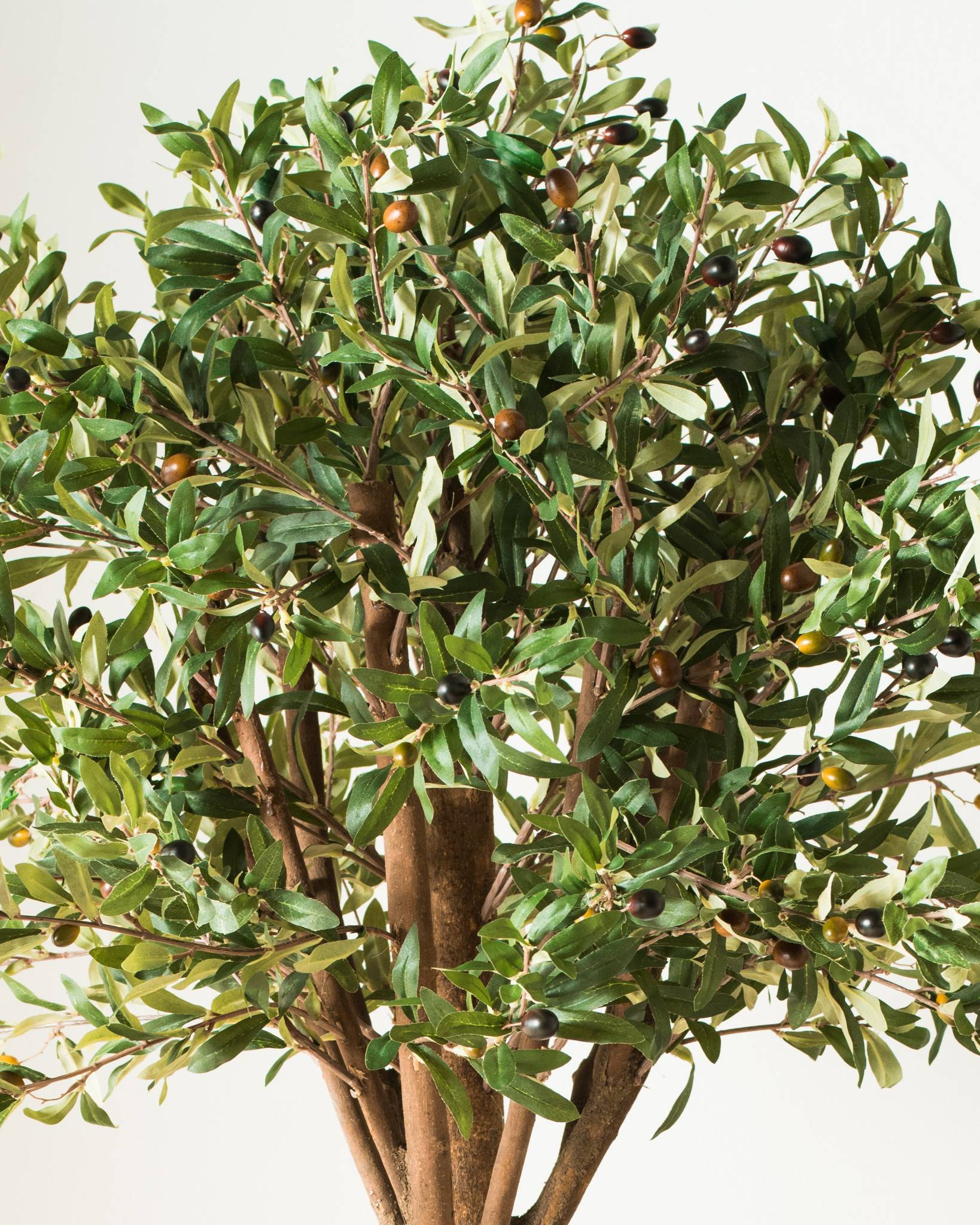 Artificial Olive Tree | Balsam Hill