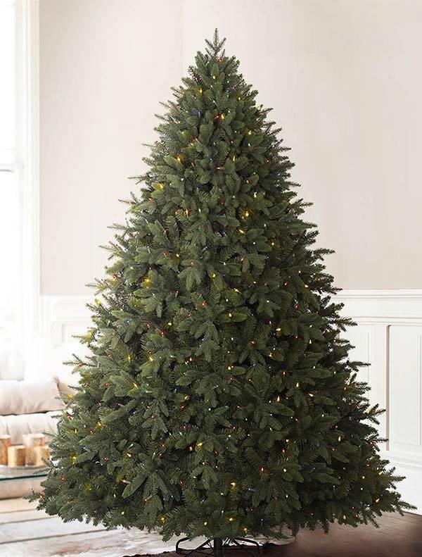 ... Tree by Balsam Hill Durango Douglas Fir -7 - Durango Douglas Fir Wide Artificial Christmas Tree Balsam Hill