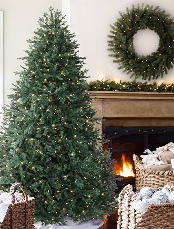 ... Norway Spruce Tree-8 ... - Norway Spruce By Vermont Signature - Balsam Hill