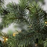 Yukon Spruce by Balsam Hill Detail