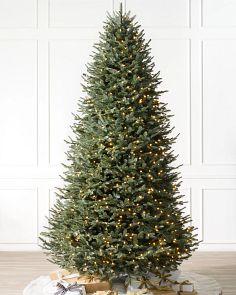 bh balsam fir narrow treemain image - Prelit Christmas Trees
