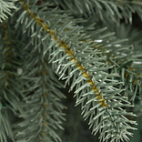 BH Blue Spruce Flip Tree by Balsam Hill Detail