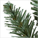 Classic Blue Spruce Narrow PDP Foliage