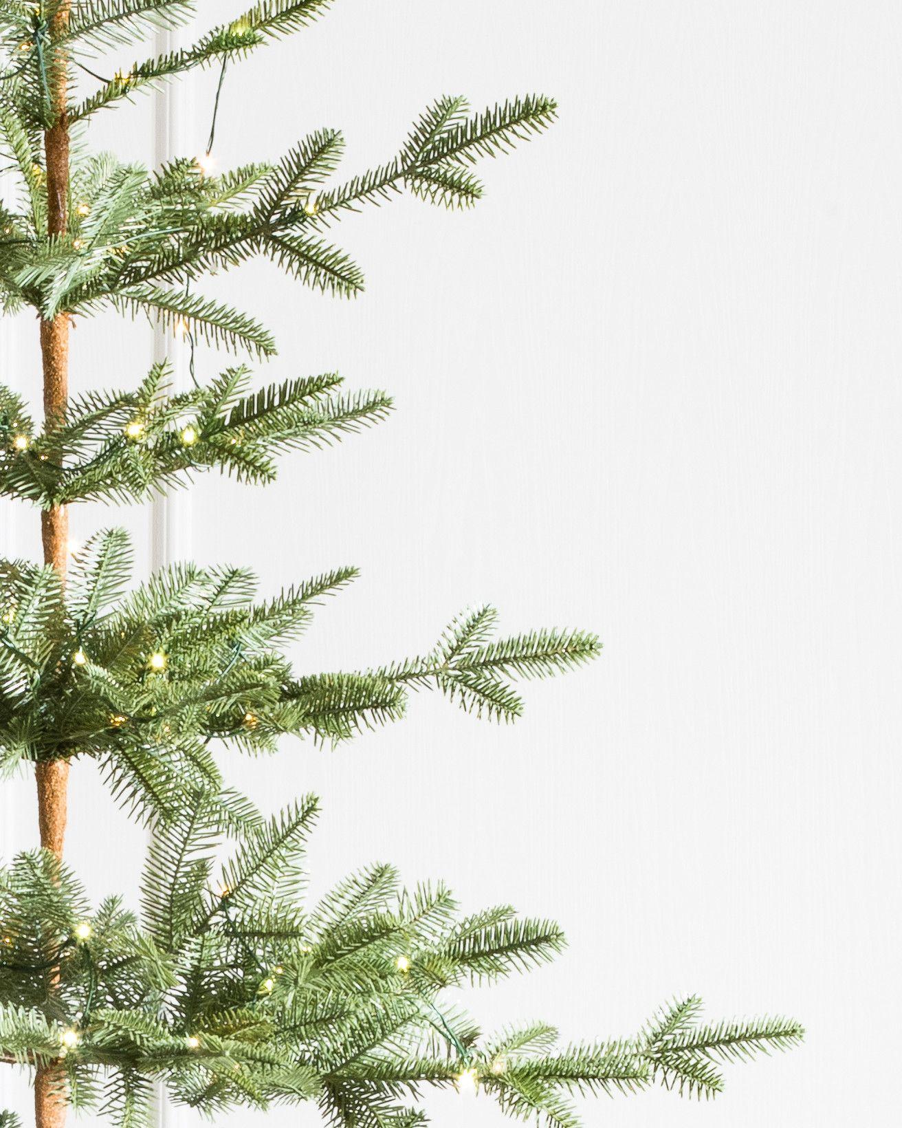 Alpine Balsam Fir Christmas Tree Balsam Hill