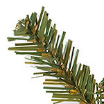 Victorian Spruce PDP Foliage