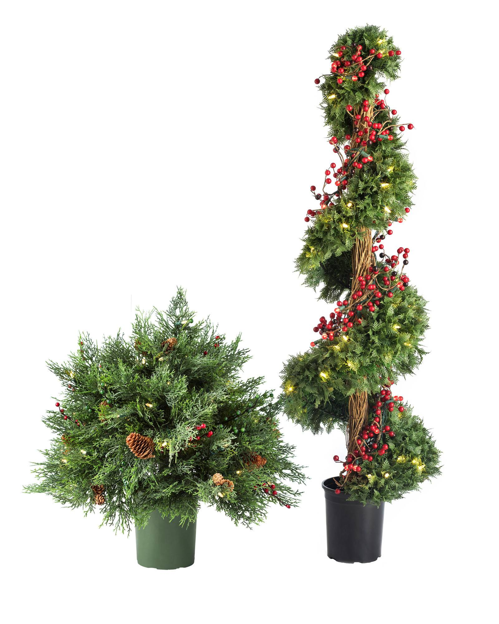 Beacon Hill Outdoor Cypress Topiary | Balsam Hill