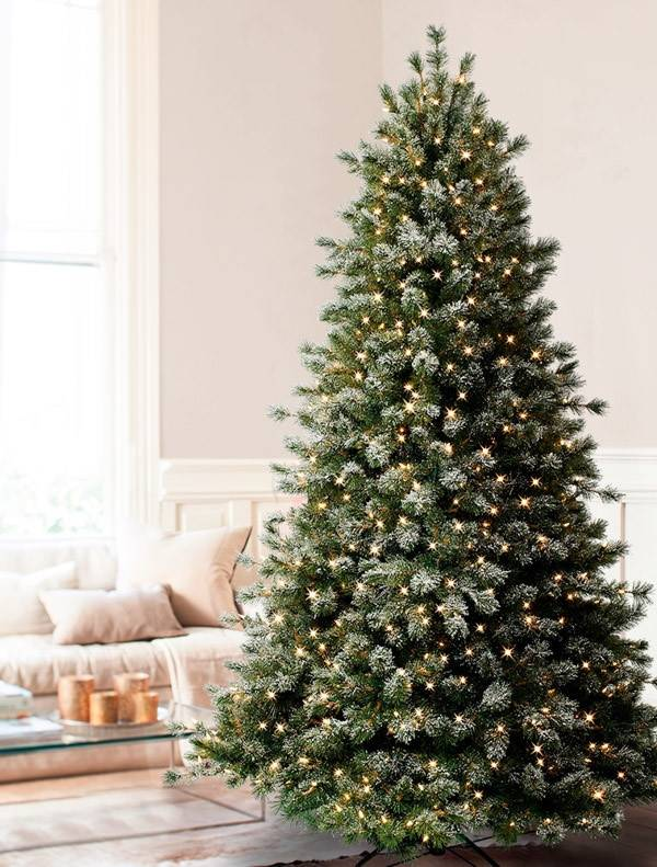 Slim Flocked Christmas Tree With Lights.Frosted Sugar Pine Narrow Christmas Tree Balsam Hill