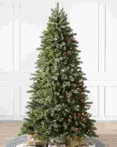 Woodland Spruce-1