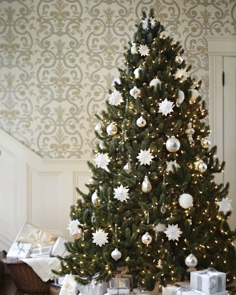 Vermont White Spruce Tree Balsam Hill