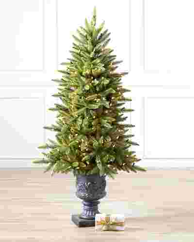 Highland Estate Potted Spruce Tree-1
