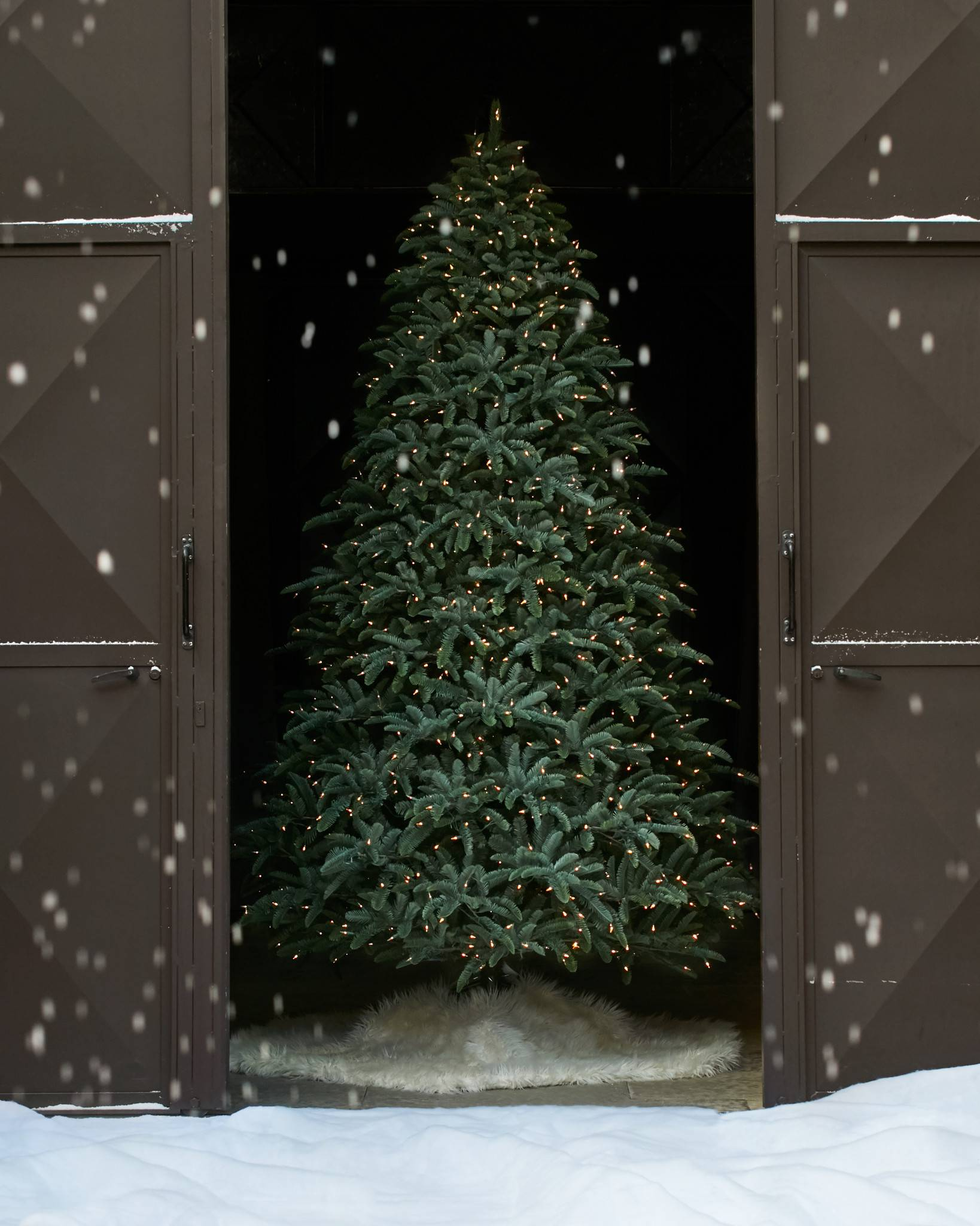 Noble Fir Christmas Trees | Balsam Hill