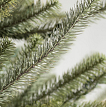 Sanibel Spruce by Balsam Hill Detail