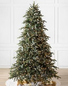 bh nordmann fir 1 - 12 Foot Christmas Trees