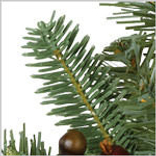Orchard Harvest Wreath by Balsam Hill Foliage