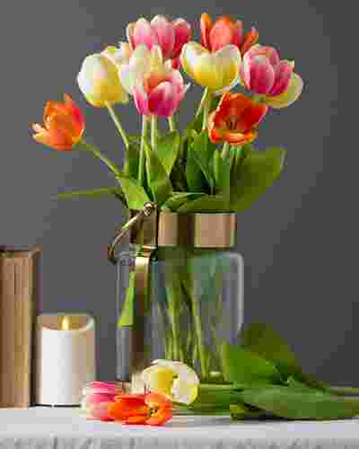 Tulip Flower Stems