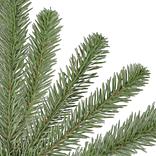 Nantucket Spruce Branch by Balsam Hill Detail