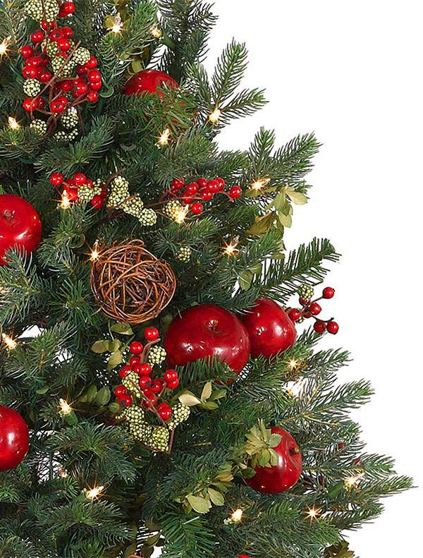 Norway Spruce Holiday Potted Tree Balsam Hill