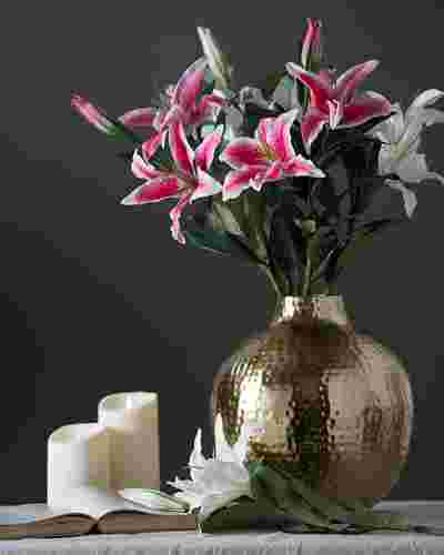 Casablanca Lily Flower Stems Main