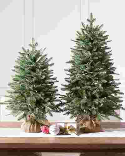 Balsam Fir Tabletop Tree by Balsam Hill
