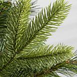 Swiss Mountain Pine by Balsam Hill
