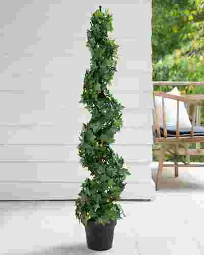 Outdoor English Ivy Spiral Topiary by Balsam Hill SSC