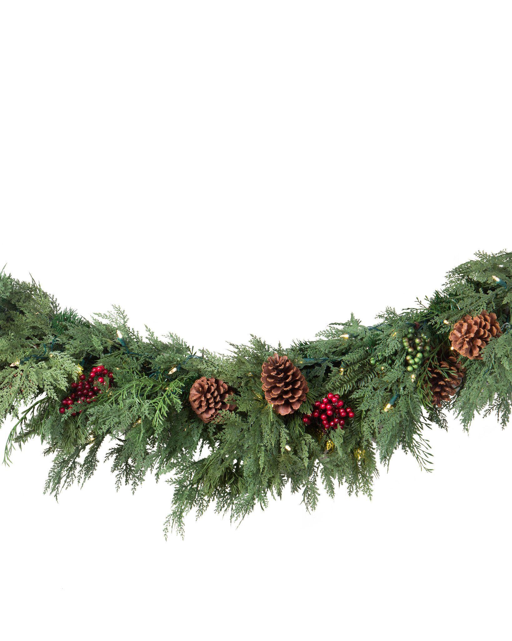 Balsam Hill Christmas Tree Co