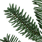BH Fraser Fir Flip Tree  PDP Foliage