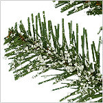 BH Frosted Fraser Fir Narrow by Balsam Hill Foliage