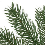 Woodland Spruce Flip Tree by Balsam Hill Foliage