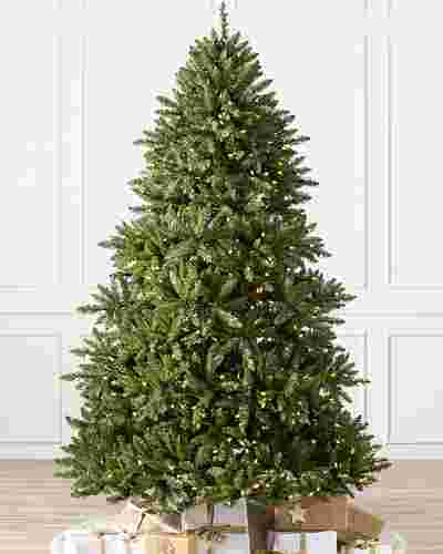 Vancouver Spruce Main by Balsam Hill