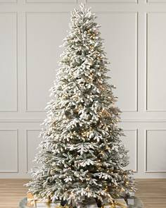 Bh Frosted Fraser Fir Narrow 1