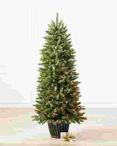 Rutherford Fir Potted Tree by Balsam Hill