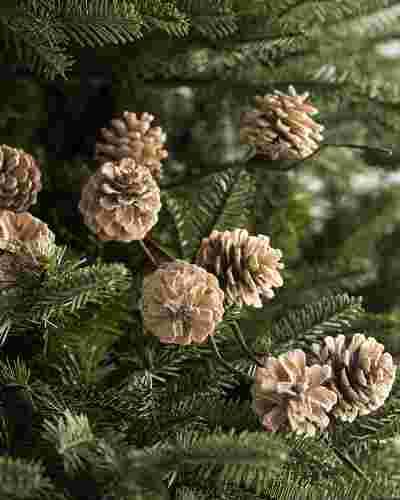 Winter Pinecone Picks, Set of 12 Main