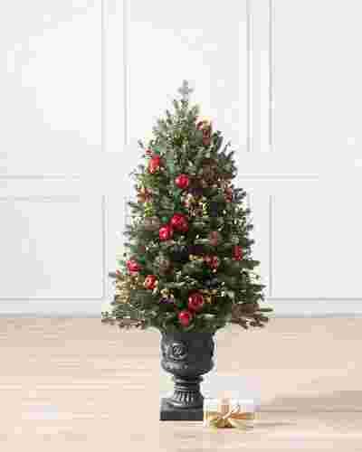 Norway Spruce Holiday Potted by Balsam Hill SSC 20